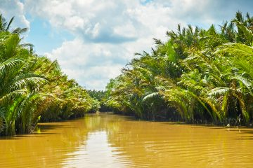 Mekong Delta – Vietnam
